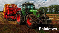 Odnośnik do Rolnictwo