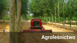 Odnośnik do Agroleśnictwo